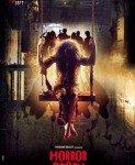 Horror Story (Horor priča) 2013